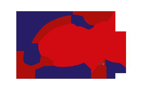 Đối tác GSC